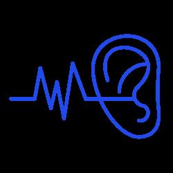 L'acustica testo online dell'udito